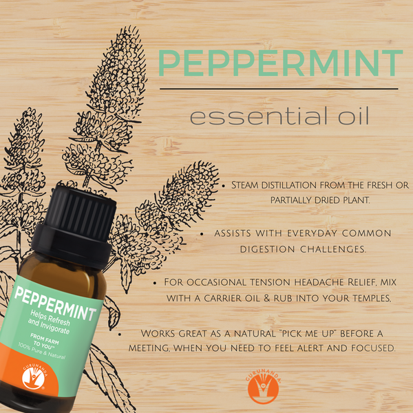 Why you Should Add Peppermint Essential Oil to Your Daily Routine