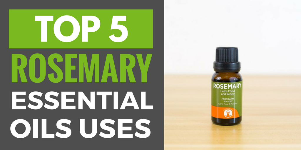 Rosemary Essential Oil Uses and Benefits