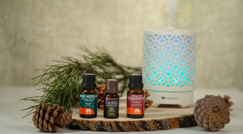 Lost in the Woods Fall Diffuser Blend