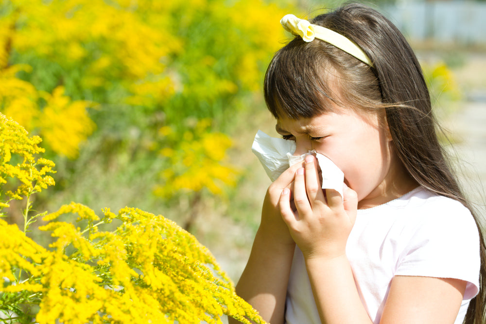 spring-allergies-why-you-get-sick
