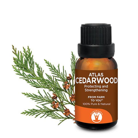 Cedarwood Atlas - Essential Oil - 100% Pure & Natural Therapeutic Grade - GuruNanda