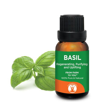 GuruNanda Basil Essential Oil