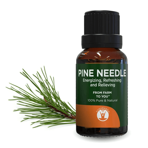 Pine Needle - Essential Oil - 100% Pure & Natural Therapeutic Grade - GuruNanda