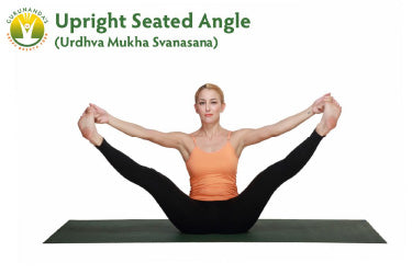 Upright Seated Angle