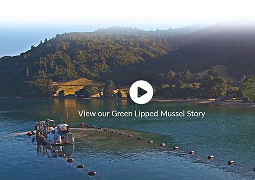 Green Lipped Mussel Story - making a joint health supplement