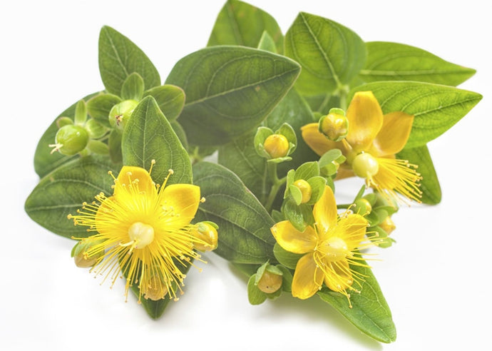 Protazen is NOT St. John's Wort