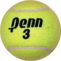 Penn Championship Tennis Game Balls | PE Equipment & Games | Gear Up Sports