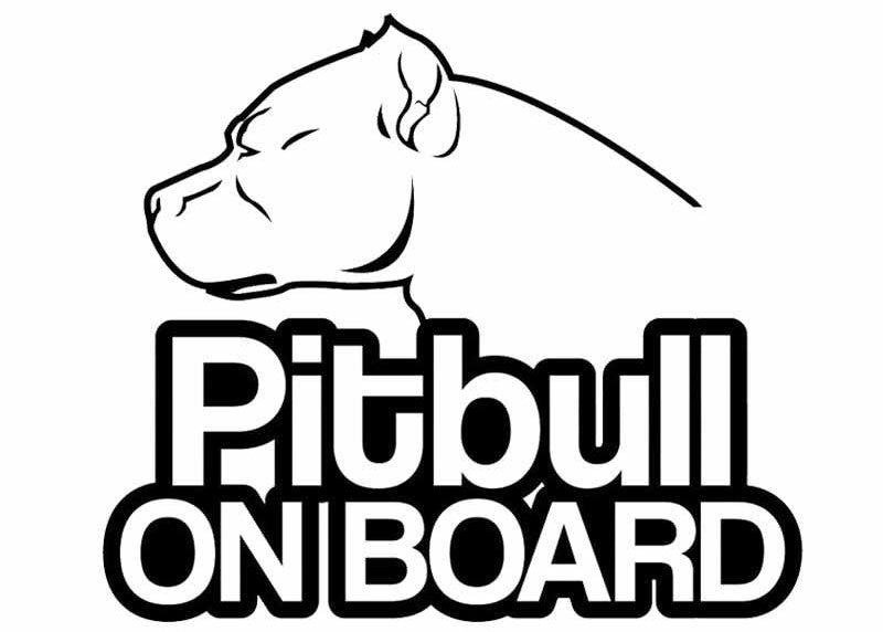 Perfect Gifts for Pit Bull Lovers
