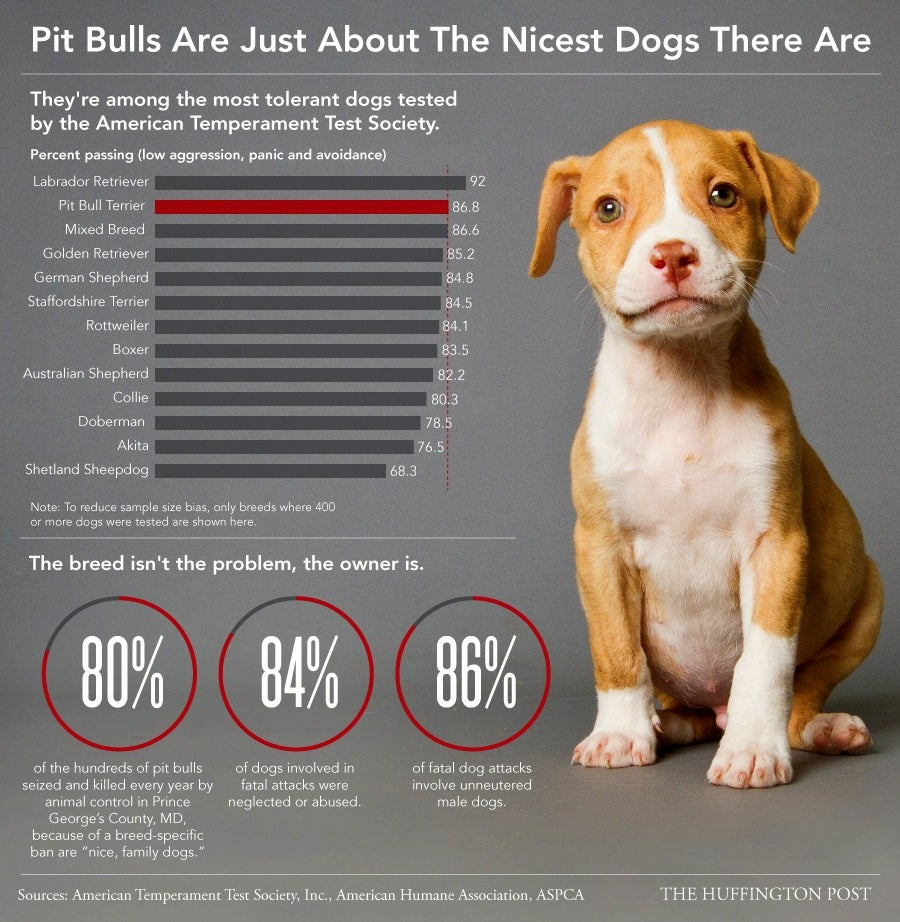 Pitbull Myths and Facts