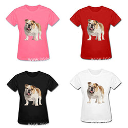 Simple White Light Brown English Bulldog Portrait Women's T-Shirt