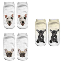 French Bulldog Bull Terrier Portrait No Show Socks (4 Pairs)