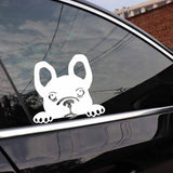 Black French Bulldog Looking Over Sticker