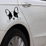 French Bulldog Looking Over Sticker