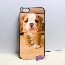 Wrinkly Tan White Baby English Bulldog Puppy Phone for iPhone