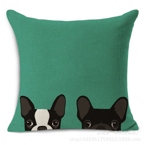 2 Black French Bulldogs Peaking From Bottom Teal Pillowcase