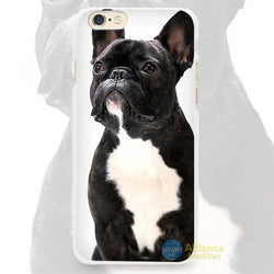 Black French Bulldog White Chest Sitting Phone Case for iPhone