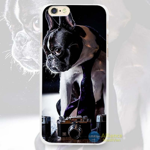Downed Boston Terrier Sitting Purple Tie Phone Case for iPhone