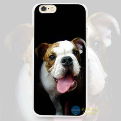 English Bulldog Puppy Tongue Out Black Background Phone Case for iPhone
