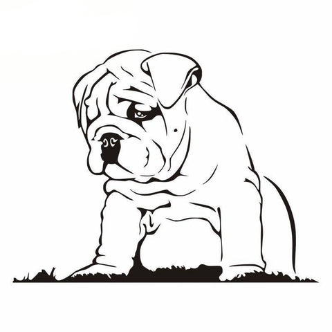 Sad Looking Down English Bulldog Large Sticker