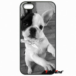 Grayscale French Bulldog Puppy Standing Phone Case for LG