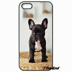 Black French Bulldog Puppy Portrait Basket Phone Case for LG