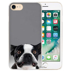 Frightened Boston Terrier Look Phone Case for iPhone