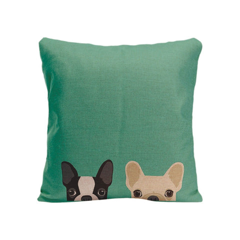 Two French Bulldogs Peaking From Bottom Teal Pillowcase