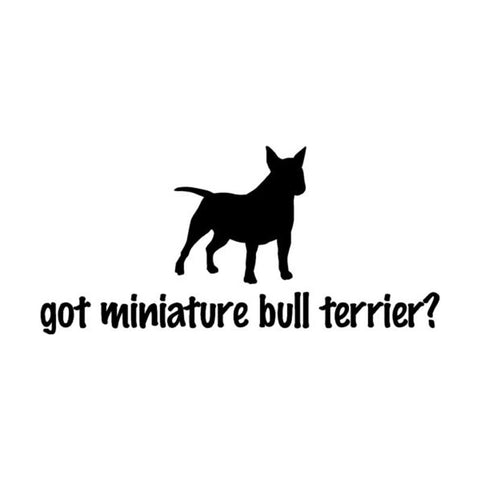 "Get Miniature Bull Terrier? Sticker (5.9"" x 2.7"")"