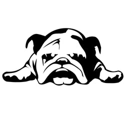 "English Bulldog Laying Arms Spread 2 Stickers (22.8"" x 9.8"")"