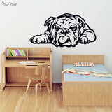 "English Bulldog Laying Down Tongue Out Outline Sticker (27.2"" x 14.2""), (34.7"" x 18.1""), (42.5"" x 22"")"