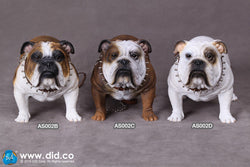 Realistic Detailed British Bulldog 1/6 Scale Figurine Collectibles