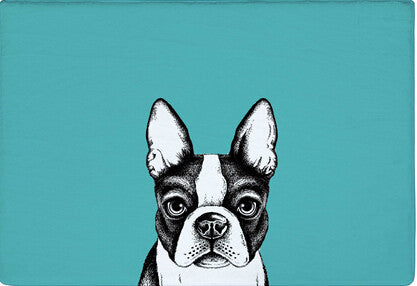 Boston Terrier Detailed Color Sketch Teal Doormat