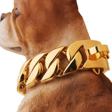 Big Gold Chain Cuban Link Style 32mm Dog Collar