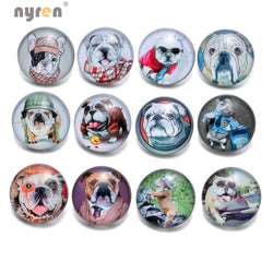 Cute Funny Bullldog 18mm Snap Button Pin (12 Piece Set)