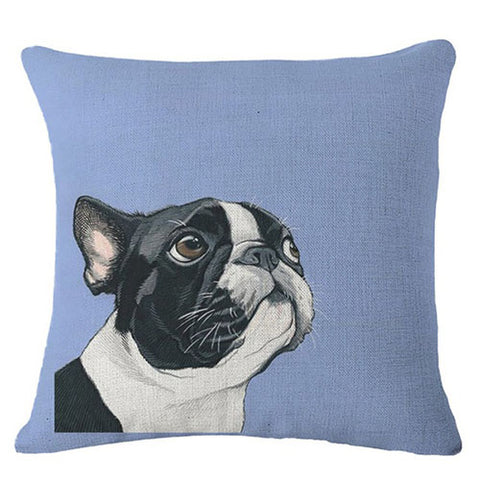 Black White French Bulldog Looking Up Site Corner Blue Pillowcase