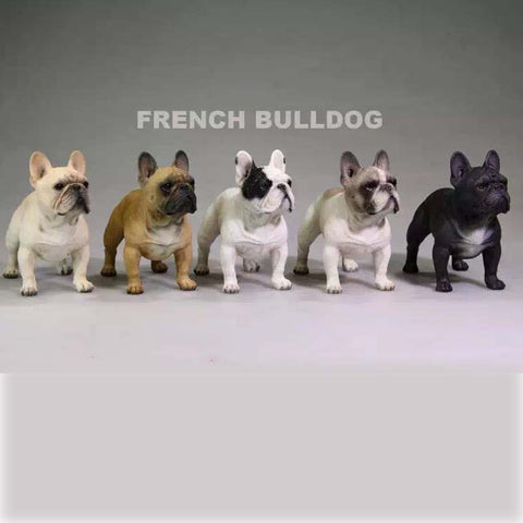Detailed French Bulldog Standing 1/6 Scale Figurine Collectibles