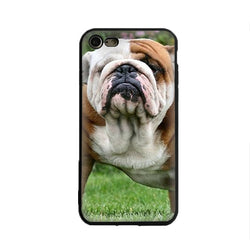 English Bulldog Brown White Standing On Lawn Phone Case for iPhone