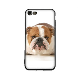 Mean Looking English Bulldog Laying Down White Phone Case for iPhone