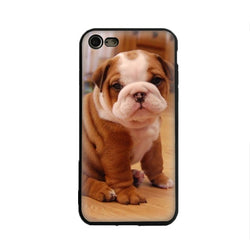 Cute English Bulldog Tan White Lazy Sitting Phone Case for iPhone