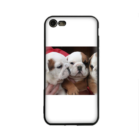 English Bulldog Triplet Puppies White Tan Phone Case for iPhone
