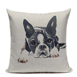Boston Terrier Laying Looking Straight Color Painting Pillowcase