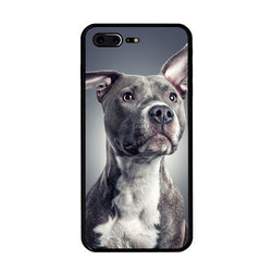 Blue Nose Pit Bull Portrait No Ear Crop Phone Case for iPhone