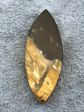 Agatized Petrified Palm Root - Marquise Cabochon