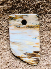 Petrified Wood Focal Bead