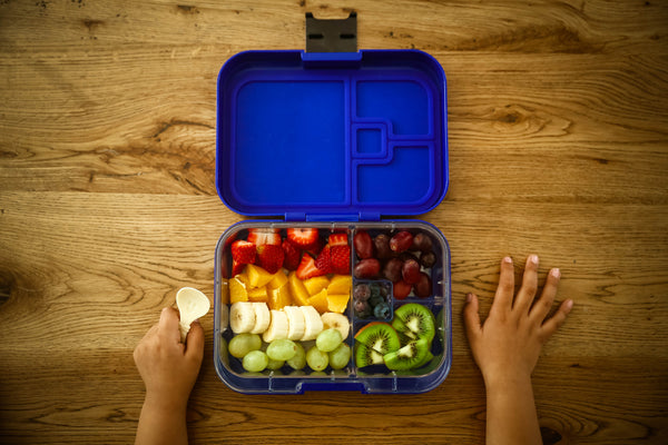 Munchbox Munch box bento bentobox mini mini4 yumbox midnight blue