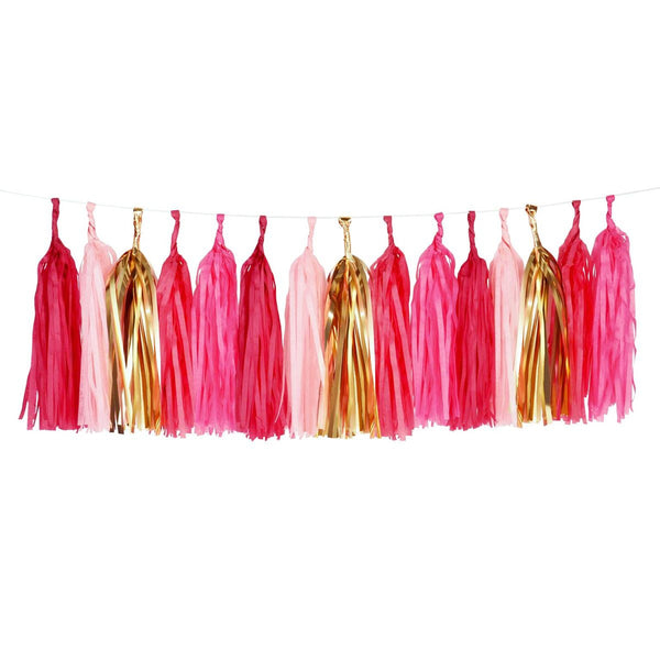 Tassels Garland Kit - Pink