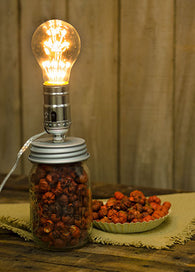 CANNING MASON JAR LAMP ADAPTER - Avenue of Oaks Decor