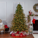 Layered Norfolk Pine, 7.5 ft., 1000 UL Clear Lights - Avenue of Oaks Decor