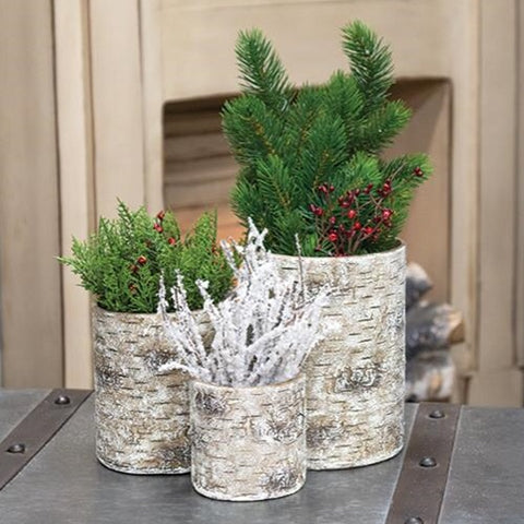 Birch Containers, Set Of 3 - Avenue of Oaks Decor