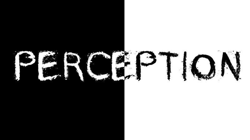 Perception Perfection